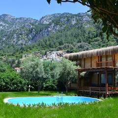 Pure Life Organic Villa – Organic Villa Genel görünüm:  tarz Oteller