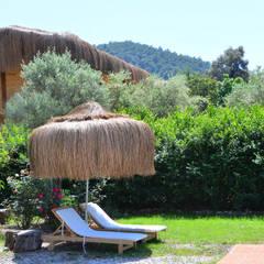 Pure Life Organic Villa – Pure Life Organic Villa:  tarz Oteller