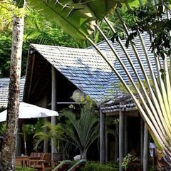 Jardines de estilo  por Eduardo Luppi Paisagismo Ltda., Tropical