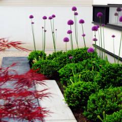 garden M1: 山越健造デザインスタジオ Kenzo Yamakoshi Design Studioが手掛けた庭です。