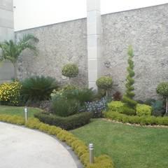 Śródziemnomorski ogród od Vivero Sofia Śródziemnomorski
