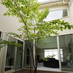 有限会社タクト設計事務所의  정원
