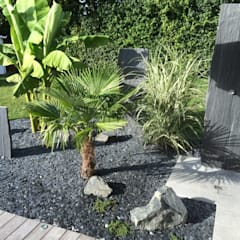 Piscine: Jardin De Style Par Schwein Aménagement