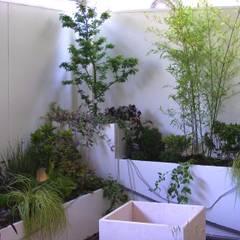 Verde abbraccio: una terrazza elegante in pieno centro cittadino.: Terrazza in stile  di Tommaso Magaldi garden design