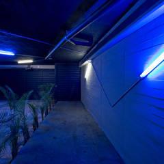 Tadeo 4909_7: Garajes de estilo industrial por Proyecto Cafeina