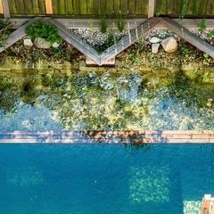 Stadtgarten mit Schwimmteich: ausgefallener Pool von Kräftner Landschaftsarchitektur