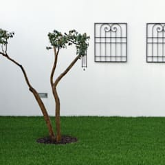 Casa de Sá: Jardins  por Sónia Cruz - Arquitectura,Moderno