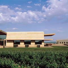Bodegas Campo Viejo - Bodegas Juan Alcorta. Edificios Social y de Oficinas: Bodegas de estilo  de Ignacio Quemada Arquitectos