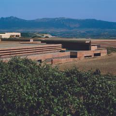 Bodegas Campo Viejo - Bodegas Juan Alcorta. La bodega: Bodegas de estilo  de Ignacio Quemada Arquitectos