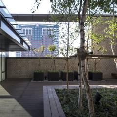N TOWER GARDEN: (주)나무아키텍츠 건축사사무소의  정원