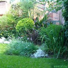 Remodelación Jardín Buenos Aires: Jardines de estilo  por abpaisajismo
