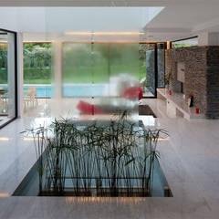 CASA CARRARA: Jardines de invierno de estilo  por Remy Arquitectos