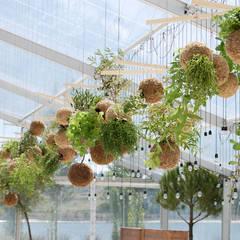 Instalação de plantas fiu suspensas na decoração de um evento: Jardins  por fiu jardins, lda.,Moderno