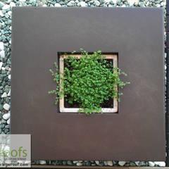 Реализация Зимнего сада г. Днепропетровск: Зимние сады в . Автор – WGWRoofs - Мастерская зеленых стен и крыш