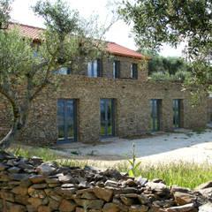 Casa Aldeia de Baixo - Alto Douro Vinhateiro Casas rústicas por Germano de Castro Pinheiro, Lda Rústico Pedra