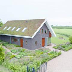 Moderne woning met 'groen dak'. : moderne Tuin door Mocking Hoveniers
