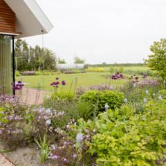 Vaste planten tuin in Houten: landelijke Tuin door Mocking Hoveniers