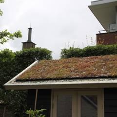 Patiotuin stadshart Maastricht:  Tuin door Hoveniersbedrijf Guy Wolfs