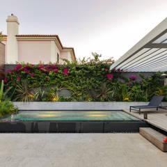 Pool by Ricardo Moreno Arquitectos,
