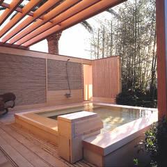 披露山のゲストハウス: 小林福村設計事務所/KOBAYASHIFUKUMURA ARCHITECTSが手掛けたプールです。