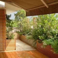 Terrazze: Terrazza in stile  di Paola Thiella
