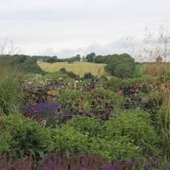 Garden by Bestall & Co Landscape Design Ltd,