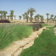Al-Bujairy Projects:  Veranstaltungsorte von MK2 international landscape architects