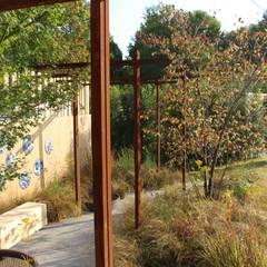 Jardin moderne par Tom de Witte - ontwerpers van de buitenruimte Moderne
