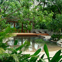 tropical Pool by BR  ARQUITECTOS