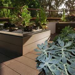 Terraza reformada con tarima y macetas de lamas sintéticas; detalle.: Terrazas de estilo  de Daifuku Designs