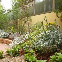 明るく 華やかな 色合いの ガーデニング: GAZON~ガゾン~が手掛けた庭です。