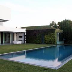 Piscina e Anexos: Piscinas de jardim  por guedes cruz arquitectos