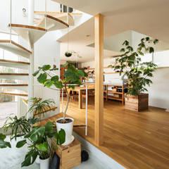 長尾元町の家: 藤森大作建築設計事務所が手掛けた廊下 & 玄関です。,モダン