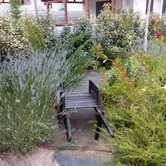 Otro jardín en la montaña: Jardines de estilo  de El creador de paisajes