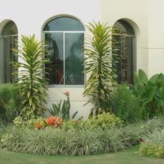 CASA CEIBA: Jardines de estilo topical por EcoEntorno Paisajismo Urbano