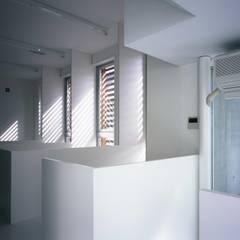 板の家: スズケン一級建築士事務所/Suzuken Architectural Design Officeが手掛けた書斎です。