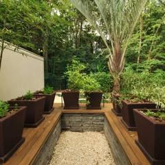 Casa WSC : Jardins  por alexandre galhego paisagismo