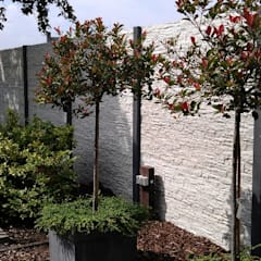 beton schutting:  Tuin door Kuiper Schuttingen