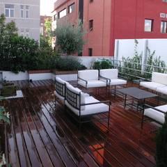 Terraza Madrid: Terrazas de estilo  de Estudio Marta Byrne Paisajismo