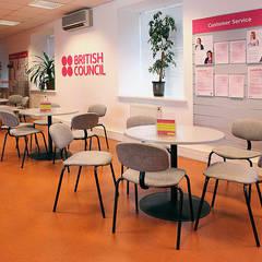 British Council в Киеве: Школы и учебные заведения  в . Автор – Студия дизайна Саши Федоренко