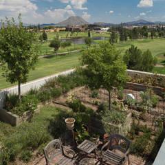 Terrazas y techos verdes. Huerto urbano. ARQUITECTURA EN PROCESO Jardines modernos: Ideas, imágenes y decoración
