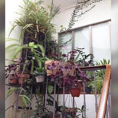Appartement La Joliette: Jardin d'hiver de style  par Genghis Studio