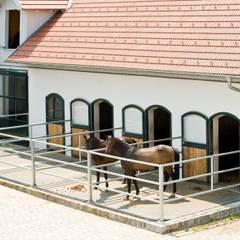 Einfamilienhaus in Laxenburg:  Garage & Schuppen von WUNSCHHAUS
