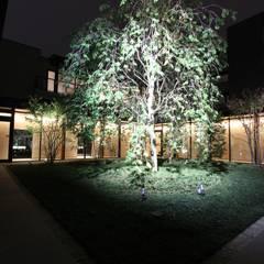 高輪フォーラム(東京): 株式会社ライティングMが手掛けた庭です。,オリジナル
