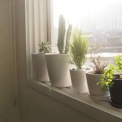 신혼집 20평대 self interior: toki의  창문