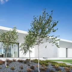 Casa Touguinhó II: Jardins  por Raulino Silva Arquitecto Unip. Lda