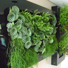 Taman oleh MC3 Arquitetura . Paisagismo . Interiores, Modern