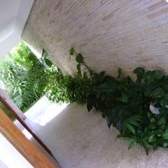 Perdizes - SP: Сады в . Автор – Eduardo Delphino Paisagismo,