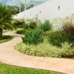 Jardín  y andador : Jardines de estilo minimalista por EcoEntorno Paisajismo Urbano