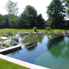 Piscinas naturales y diseños sustentables: Piletas de estilo  por arqs.insitu